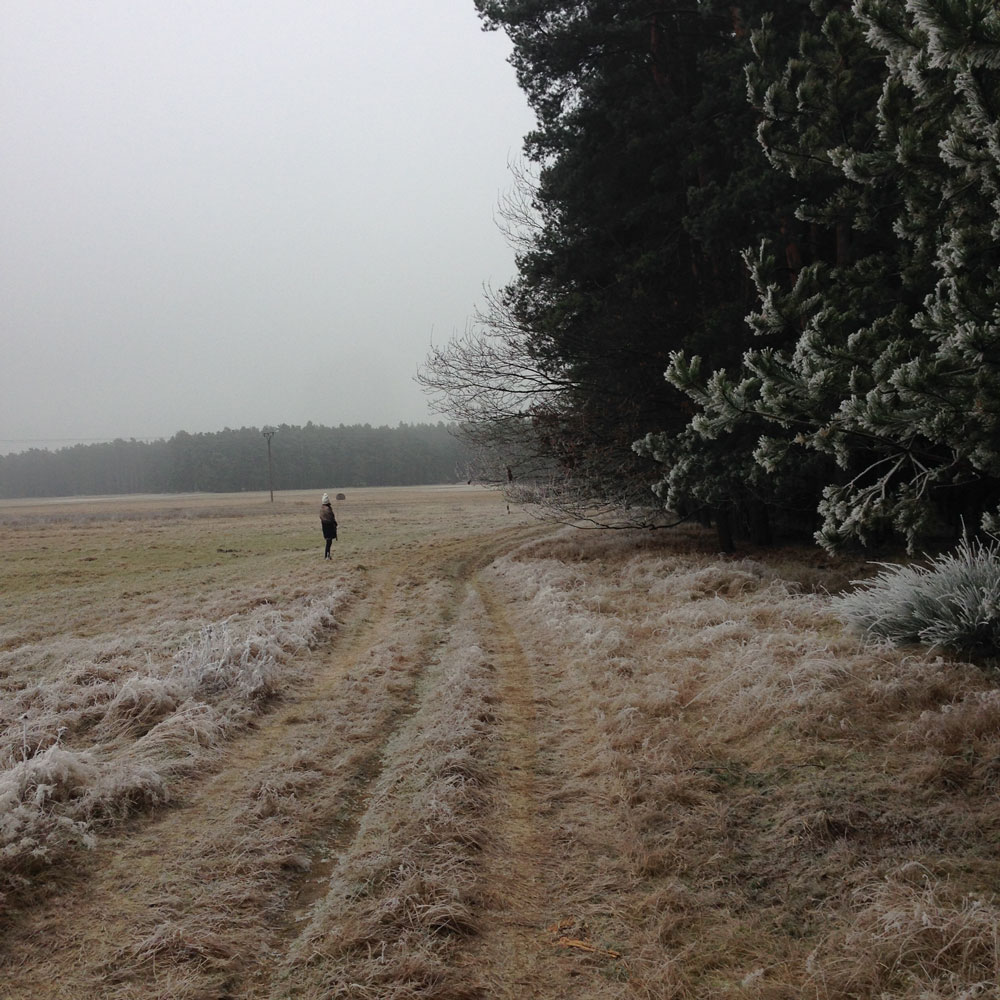 Czech Countryside Wintertime
